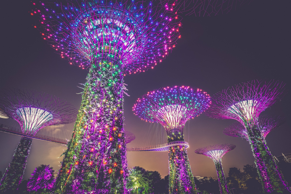 Budget entertainment tip: Gardens By The Bay in Singapore